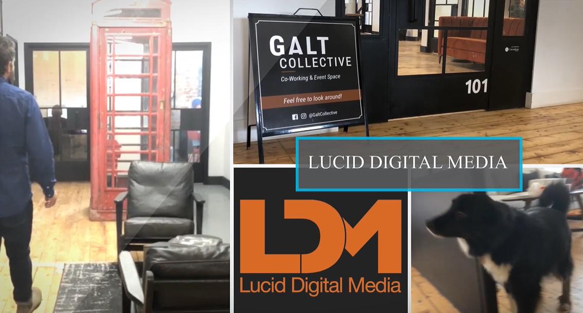 Galt's Favourite: Lucid Digital Media